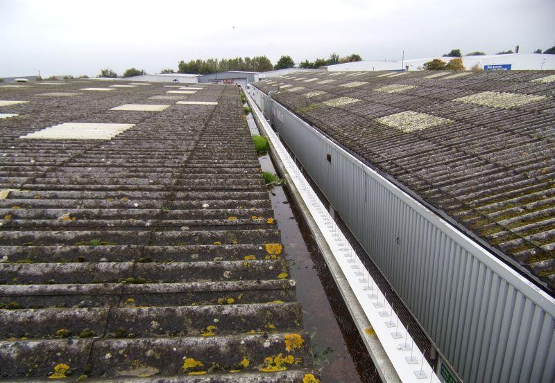 Gutter Refurbishment before, mossy gutters, plants in gutter