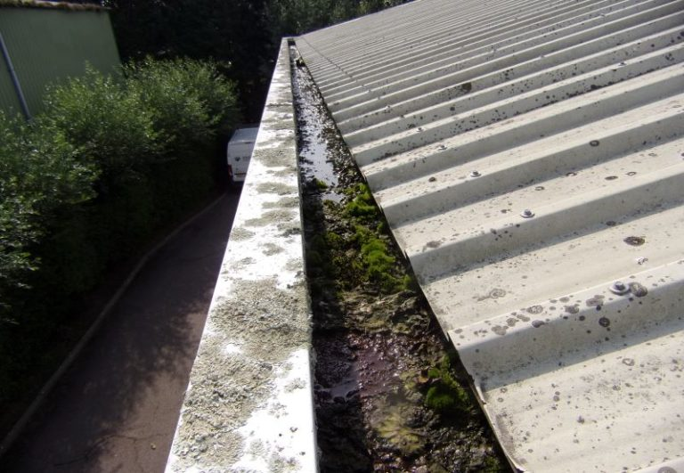Gutter refurbishment before, messy and plants in gutter