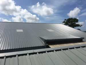Industrial roofing and cladding with roof light